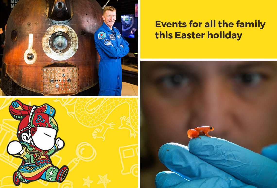 Image Credits: Tim Peake - MSI Manchester Terracotta Toddlers - World Museum Liverpool Frog - Chester Zoo